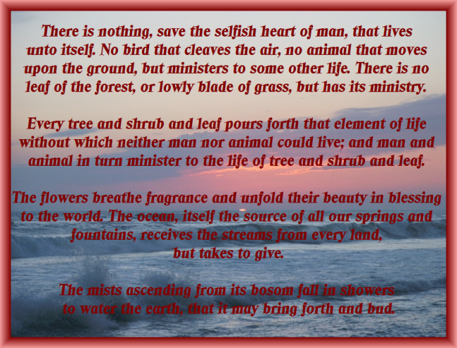 Pink Sunset with Portion from Joy of Giving by Ellen G White