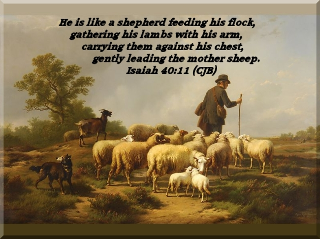 Shepherd with Flock by Flickr User Will Humes CC License = Attribution, NonCommercial, Share Alike