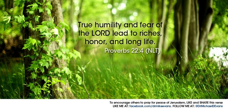 Proverbs 22:4 by Flickr User Dr. Michael D Evans, CC License = Attribution, Noncommercial, No Derivative Works