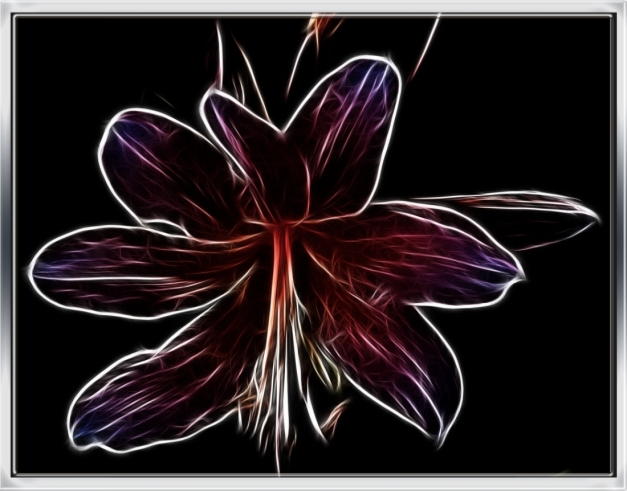 Naked Lady Flower with Macro Attachment--Fractalius Edit and Frame--4 WP2